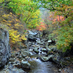 Mt.Nochu in Korea